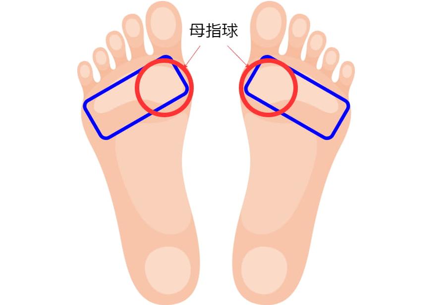 ペダルを踏むときの足の部位の画像